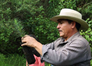 Instructor Anastacio shows planting techniques