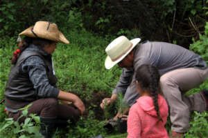 Anastacio helps a family in C.Morales to plant