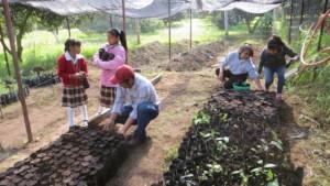Man & children work on their nursery at C.Morales