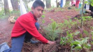 Child from ejido El Capulin plants a tree