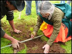 Indigenous Woman Reforesting