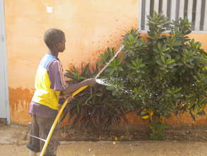 Talibe watering plants beside MDG resource centre