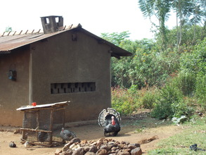 Turkey in Uganda ... micro project