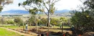 Tasmanian Devil Retirement Village Construction
