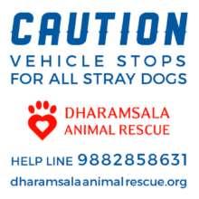 #slowdownDharamsala