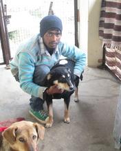Pari with caretaker Sachin and Sam photo bombing