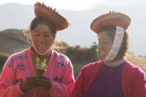 Jesusa and Florentina teach about medicinal plants