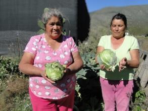 Two women in their community farm, Zapaliname