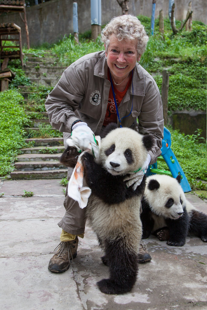 Saving Giant Pandas in China with Earthwatch