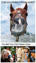 Can You Make A Horse Smile?