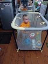Kiril in his playpen when we first met him