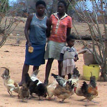 Girls with their chickens