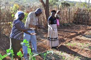 Training in Conservation Farming