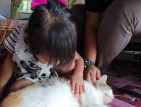 She loves cat