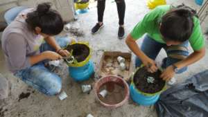 Recycling for indoor gardens