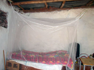 provide a mosquito net to safeguard a family