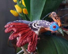 Flying hoatzin ornament