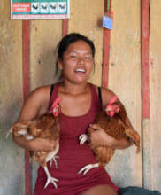 Huitoto woman selling chickens for workshop dinner