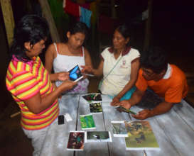 Dora group looking at photos of Amazon insects