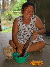 Artisan grating fruit pod dye. Plowden/CACE