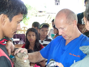 Dr. Dan with a feline patient