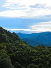 Panama Mountains
