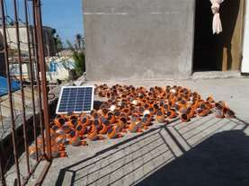 Solar lamps charging before distribution
