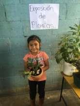 Plant exhibition