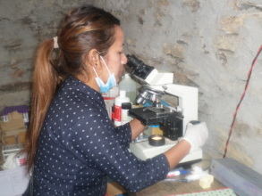 HHC labtech checking sample at medical camp 2018