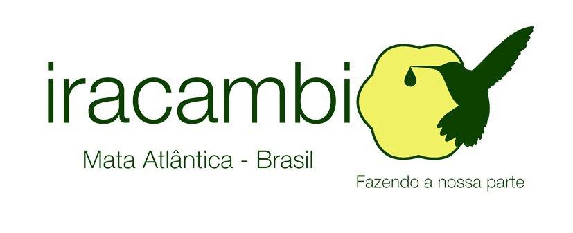 Plant 1000 seedlings in the Brazilian rainforest