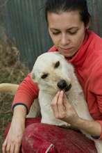 Anda Popescu with rescued dog Yuki