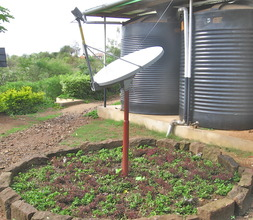 The reclaimed space around the dish