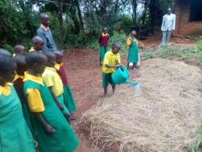Students Planting Moringa Seeds