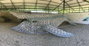 The whale, constructed out of plastic bottles!