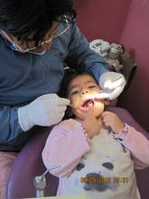 Donated dental care for every student last year