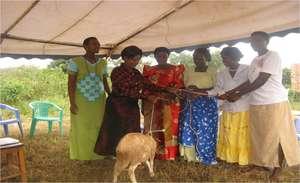 Women ecconimc empowerment