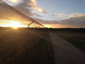 Beautiful twilight image of part of our fenceline