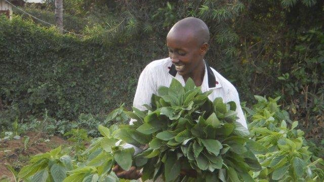 Seeds of Hope for 250 Hungry Zimbabwean Youth