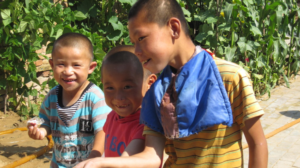 Orphans into foster families in China