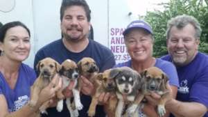 Rescuing puppies goes hand in hand with Clinics