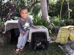 Elijah checking on his dog Lady!