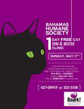 Advertising our Free Cat Spay/Neuter Clinic