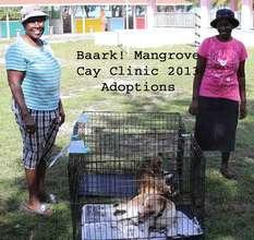 Mangrove Cay Clinic Adoptions