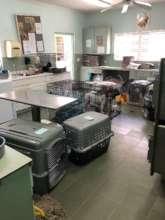 Clinic setup