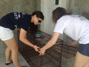St. Andrew's Students setting a trap