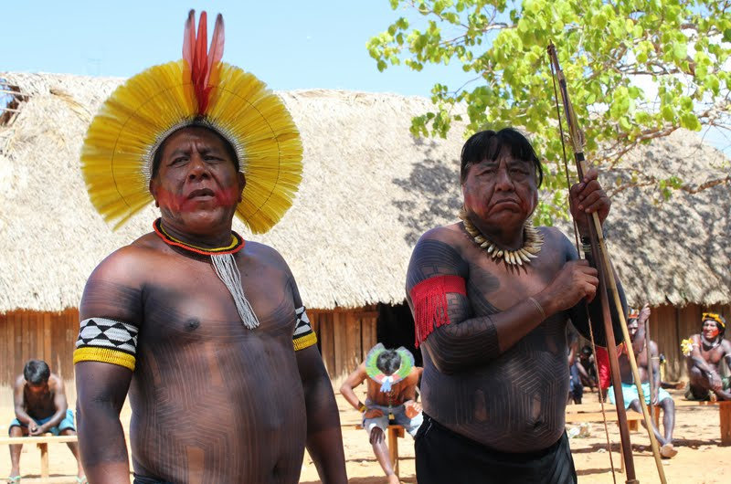 Empower Indigenous Brazilians to Save their Amazon