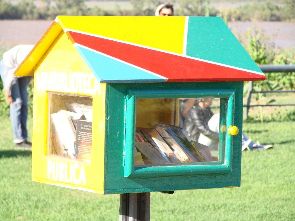 Public Mini Libraries