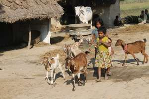 Life of a girl in rural villages of Nepal