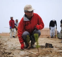 Author during the tree planting activity.