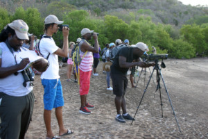 Practicing identifying birds (A. Ollivierre)